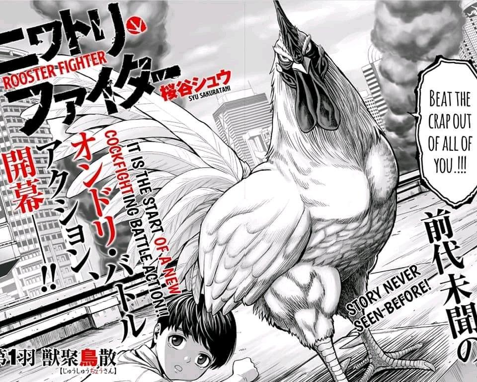 Sakura (Boruto) vs Galo (Rooster Fighter) Aq9b4i75cy661