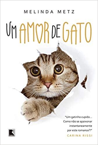 Dia Mundial dos Animais Um amor de gato